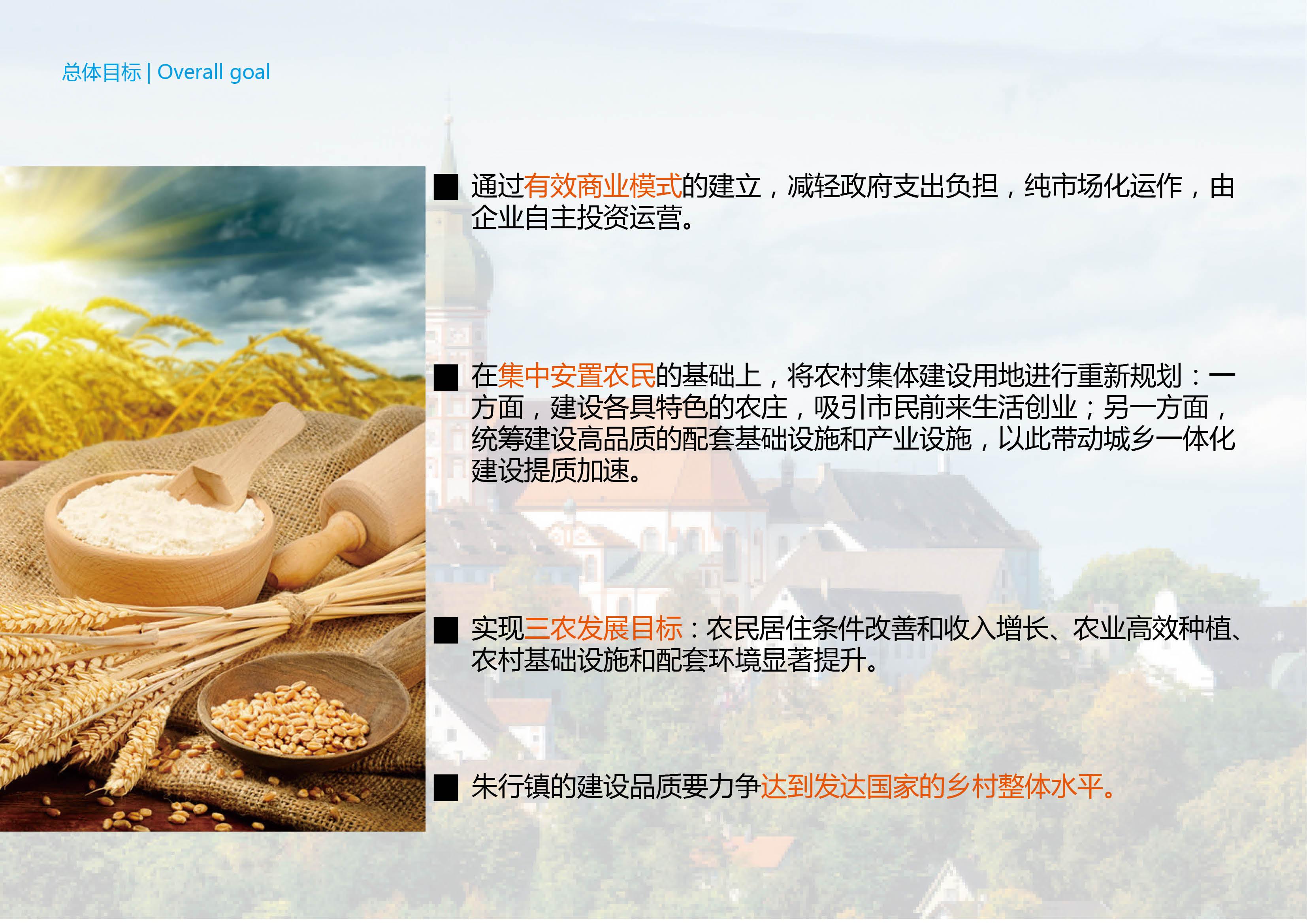 上海金山區市民農莊項目戰略發展規劃12.30-上海金山區市民農莊項目戰略發展規劃19