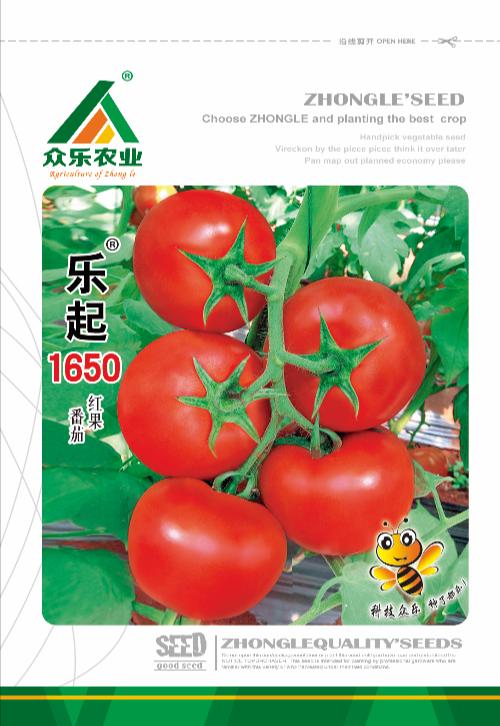 番茄乐起1650正