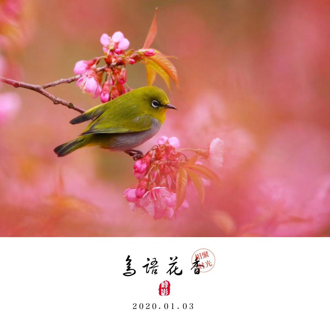 吳曉峰-微信圖片_20200117101005