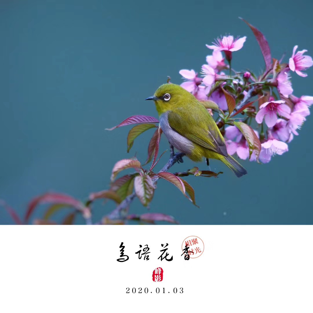 吴晓峰-微信图片_20200117101049