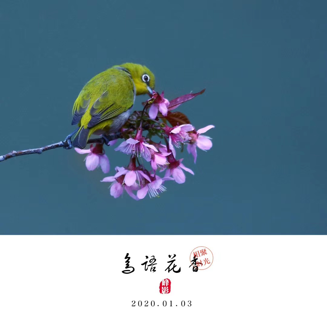 吳曉峰-微信圖片_20200117101059