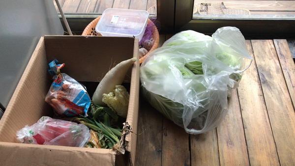 陳開家里儲存的一些蔬菜