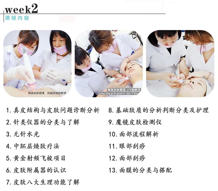 皮肤管理综合班课程内容2