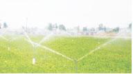 农业森林灌溉