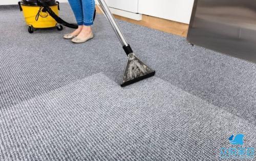 商丘地毯清洗公司