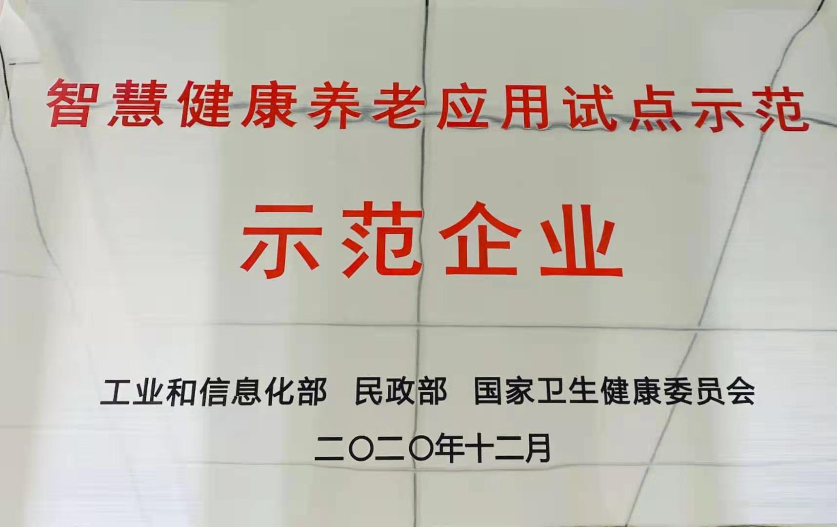 "www.194.net荣获""全国第四批智慧健康养老示范企业""称号"