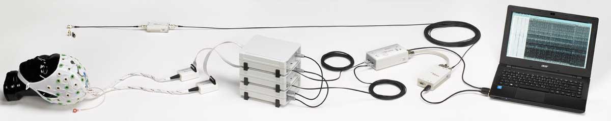 脑电,事件相关电位,ERP,脑电仪,BP